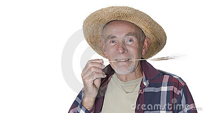 Old gardener with straw in mouth