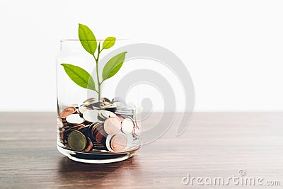 stock image of coins in a bottle and the green tree, represents the financial growth. the more money you save.