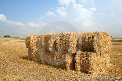 Bales of straw blue sky