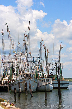 Shrimp Boats 1