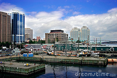 Harbor by the City