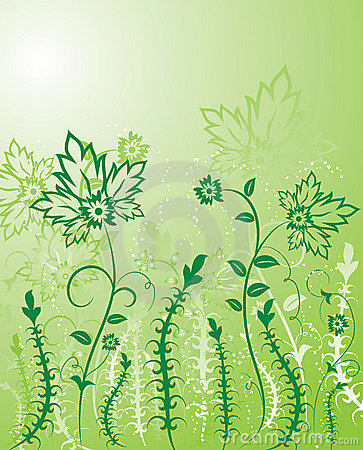 Background flower, elements for design, vector