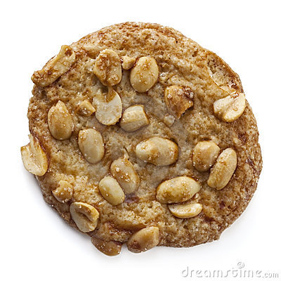 Stock Photo of One Peanut Cookie