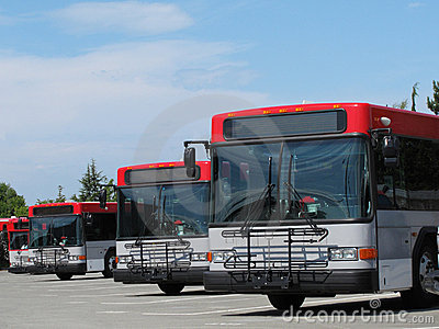 Mass Transit City Buses Parked