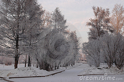 Winter Irkutsk