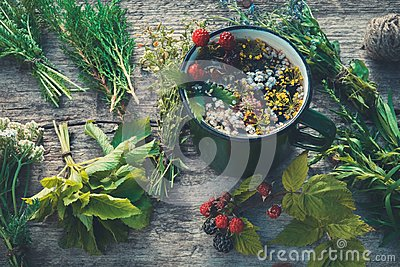 Healthy herbal tea in enameled mug and bunches of healing herbs.