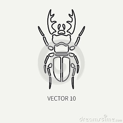 Line flat plain vector wildlife fauna icon stag beetle. Simplified retro. Cartoon style. Insect. Deer bug. Entomology