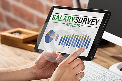 Businessperson Doing Survey On Salary Result