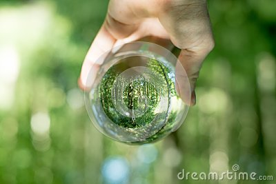 Glass globe in the hand