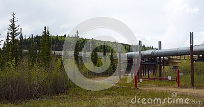 The famous alaskan pipeline in the springtime
