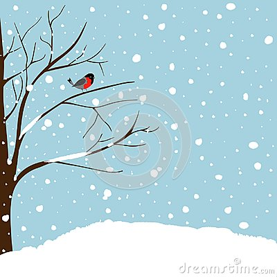 Winter Landscape Scene. Christmas New Year Greeting Card. Forest Falling Snow Red Capped Robin Bird Sitting on Tree. Blue Sky