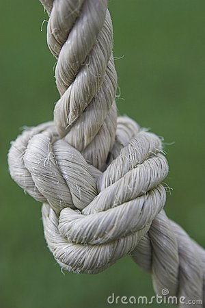 Knot