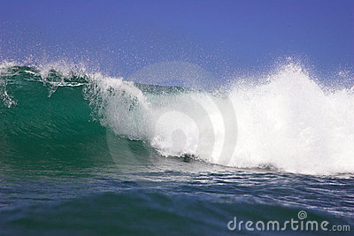 Hawaiian Wave