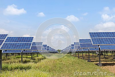 Rows array of polycrystalline silicon solar cells in solar power plant turn up skyward absorb the sunlight from the sun use light