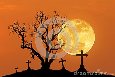 Silhouette scary dead tree and silhouette spooky crosses in mystic graveyard with big full moon.