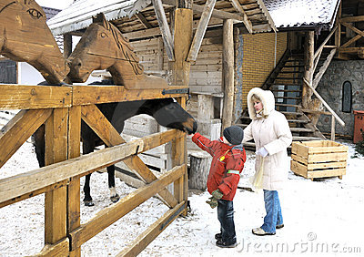 Mother and sons feed a horse in winter