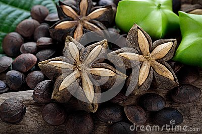 Dried capsule seeds fruit of sacha-Inchi peanut