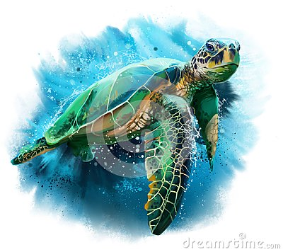 Big sea turtle
