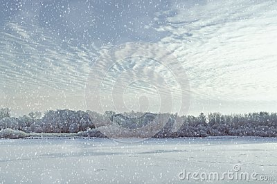 Winter landscape. Snowy winter trees along the frozen river at sunset