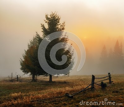 Morning. autumn dawn in the Carpathian Mountains