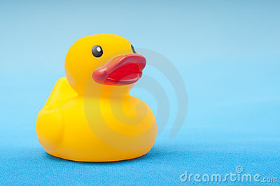 Yellow rubber duck on blue background water