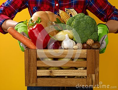 Closeup on woman grower showing box of fresh vegetables