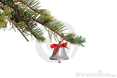 Silver bell on a spruce tree branch