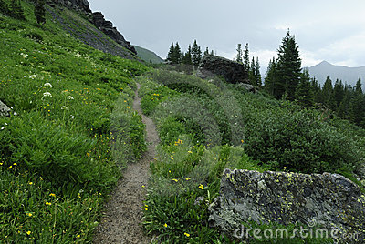 Hiking trail in Colorado Rocky Mountains