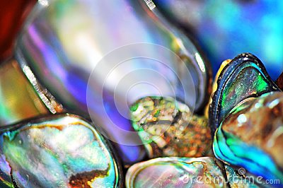 Abstract blurred background vivid bright colors abalone paua shells