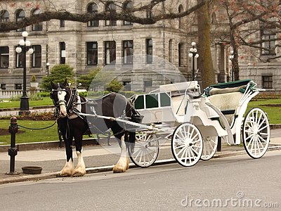 Horse and Carriage at Parliament Building Victoria British Columbia Canada