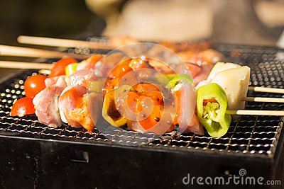 BBQ grilled in a grille , seasoned with seasoning. Use as a food concept