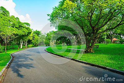 Asphalt road go to greenness forest and blue sky