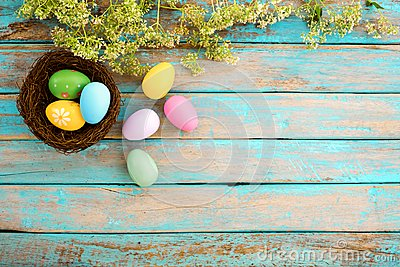 Colorful Easter eggs in nest with flower on rustic wooden planks background in blue paint.