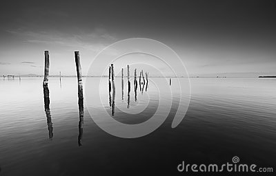 Calm scene with reflection of wooden pillars in black and white