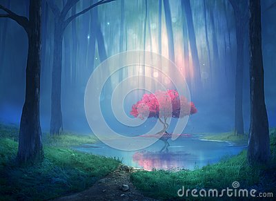 stock image of cherry tree in the forest