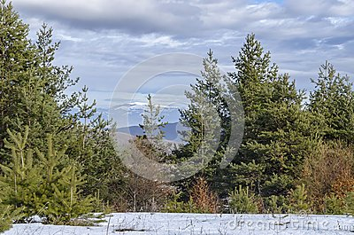 Majestic view of cloudy sky, winter mountain, snowy glade, conifer and deciduous forest from Plana mountain toward Balkan mountain