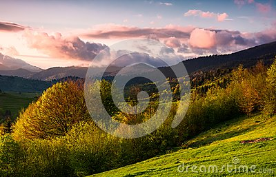 Forested hill at cloudy sunset in springtime
