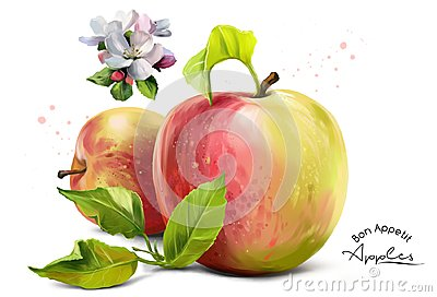 Apples, flowers and splashes