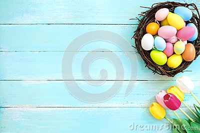 Colorful Easter eggs in nest with tulip flower on blue wooden background.