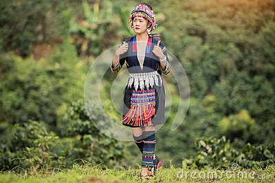 Hill Tribe Coffee Plantation,Akha Woman Picking Red Coffee On Bouquet On Tree