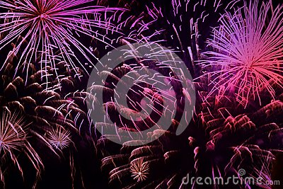 Bright vivid purple fireworks with sparks. Explosive pyrotechnic devices for aesthetic and entertainment purposes, art