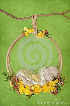 Props on the branch for a photo shoot of a newborn