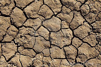 Deep Mud Cracks Background