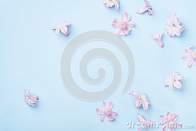 Beautiful pink flowers on blue background top view. Pastel colors. Flat lay style. Mother or woman day greeting card.