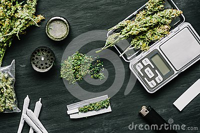 Cones of marijuana flowers on scales, grinder and shredded cannabis joint and a packet of weed on a black wood background