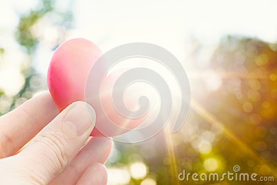 Person holding heart shaped plum against the sun. Love concept lifestyle image with sun flare. Valentine`s day background.