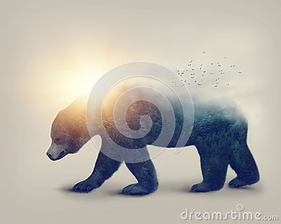 Double exposure with a bear