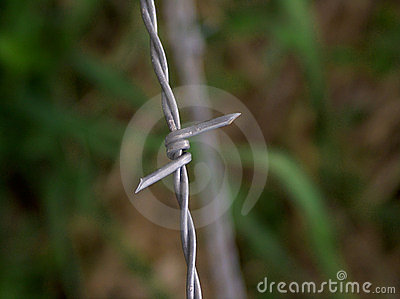 Vertical Barbed Wire