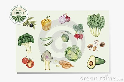 Illustration of veggies drawing style