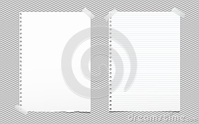 Torn blank and lined white note, notebook paper sheet for text stuck with gray sticky tape on squared background.